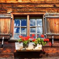 Ruralna kuća, apartmani i sobe za iznajmljivanje na OPG