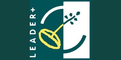LEADER LAG
