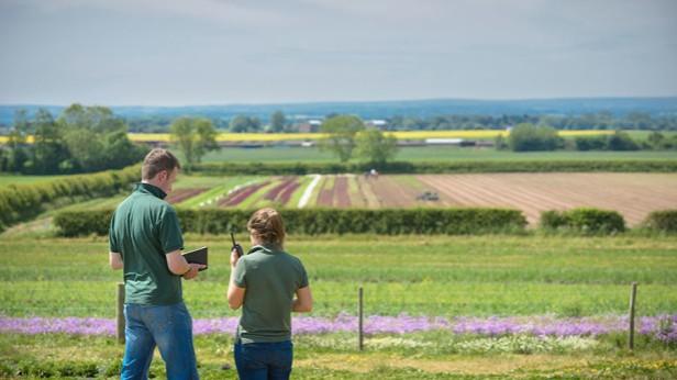 young-farmers-in-fieldCultura-REX-Shutterstock--615x346