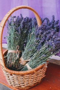aroma-basket-beautiful-flowers-171259