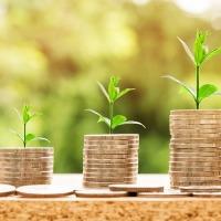 Mjera 6.3.1. Potpora za mala poljoprivredna gospodarstva