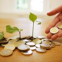 Mjera 6.3.1. LAG natječaji 2020.godine za 15.000 eura bespovratne potpore malim poljoprivrednicima