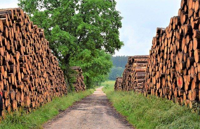 8.6.1. Bespovratna sredstva za pilane i obradu drva